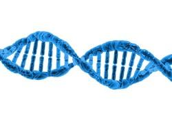 molecular_pixabay